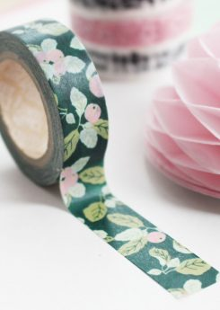 Washi tape - Apple farm