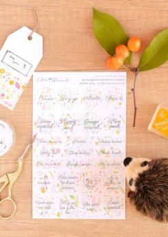 Colección Flora - Set de pegatinas Snail Mail